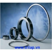 Carbon seals Graphite